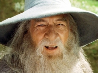 Gandalf the Grey from Lord of the Rings